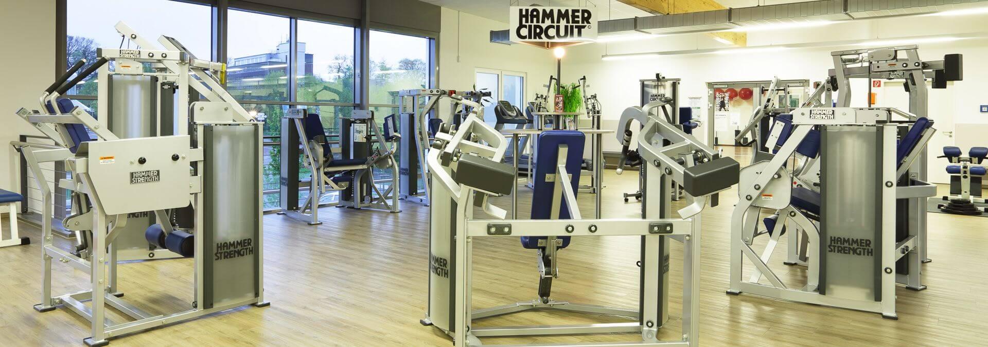 Hammer_1_MG_0474
